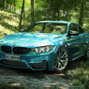 Bmw.in_.forest.1