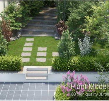 پک کامل مدل های سه بعدی درخت ،گل و گیاهان سه بعدی