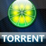 تورنت و روشهای دانلود از تورنت